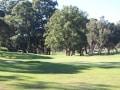 Golf-Day-2019-32