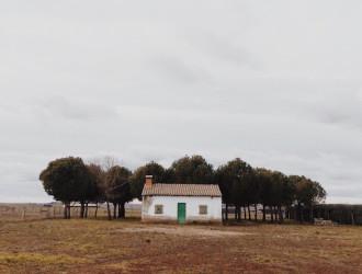 Jesse Wilcox – Home Is